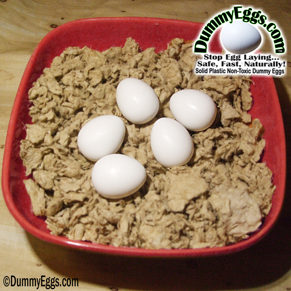 Solid Plastic SMALL PARROT DUMMY EGGS in Melamine Nest Bowl fits Conure Eggs, Caique Eggs, Rosella Eggs, Pionus Eggs, Senegal Eggs, Jardine Eggs, Indian Ringneck Eggs. Stop Egg Laying!
