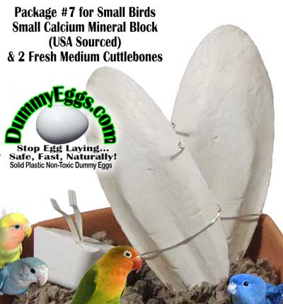HealthyHen Package #7 includes 2 Fresh Medium Cuttlebones and small calcium-mineral block for small birds at DummyEggs.com